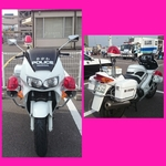 PhotoGrid_1448208557272.jpg